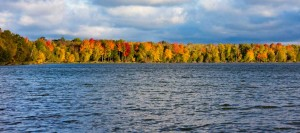 Gorgeous fall colors surrounding lark's lake in northern Michigan