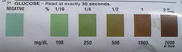 Chart on bottle to determine the amount of glucose in the urine