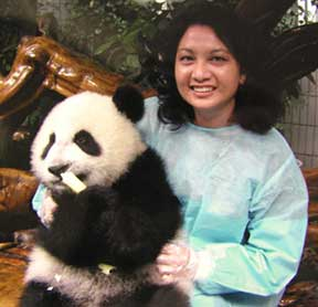 Dr Seto with a panda friend in China.