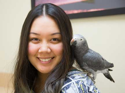 Nurse with a healthy African Grey bird perched on her shoulder