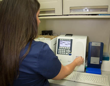 In House Blood Analyzer