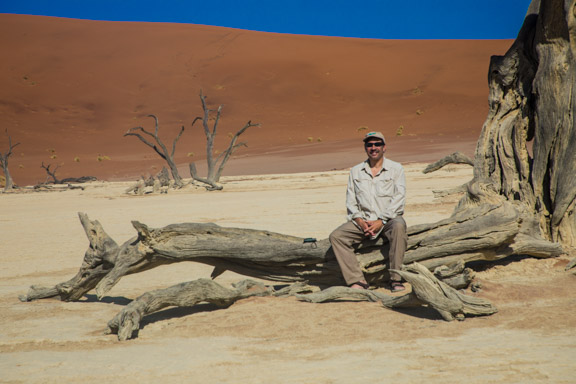 Namibia-Namib-Naukluft-Dunes-tree-carl