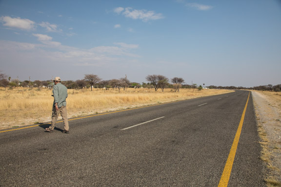 Turtle-road-Namibia-Carl-helping