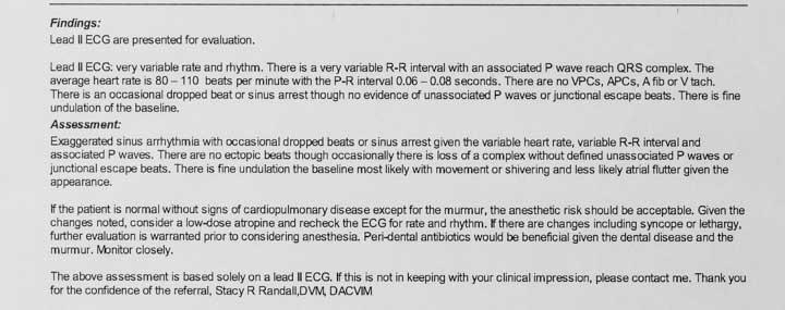 An EKG Report