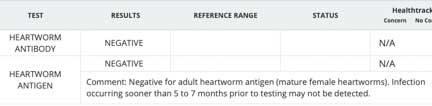 Heartworm antigen and antibody test