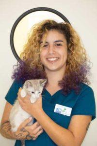 Staff holding kitten