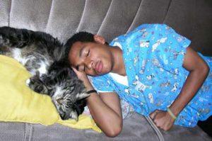 Cat sleeping with staff