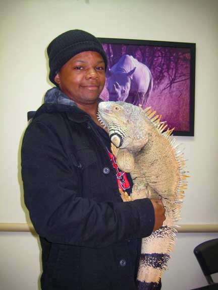 Owner holding a large male iguana