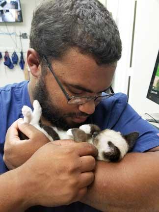 Nurse hugging kitten in arms