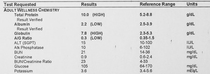Low protein and albumin