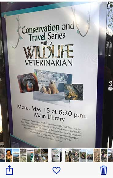 Wildlife presentation flyer